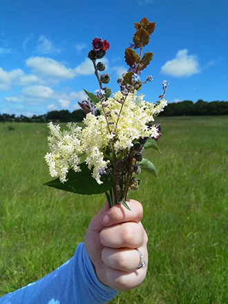 A hand holds a bunch of wild flowers against the background of a grassy field.